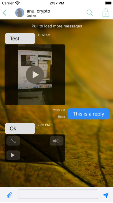 Preview of the Monal inline audio and video player